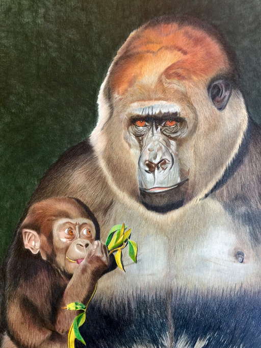 Lowland-Gorilla-Family