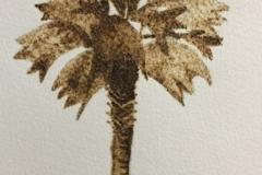 Palmetto-Tree